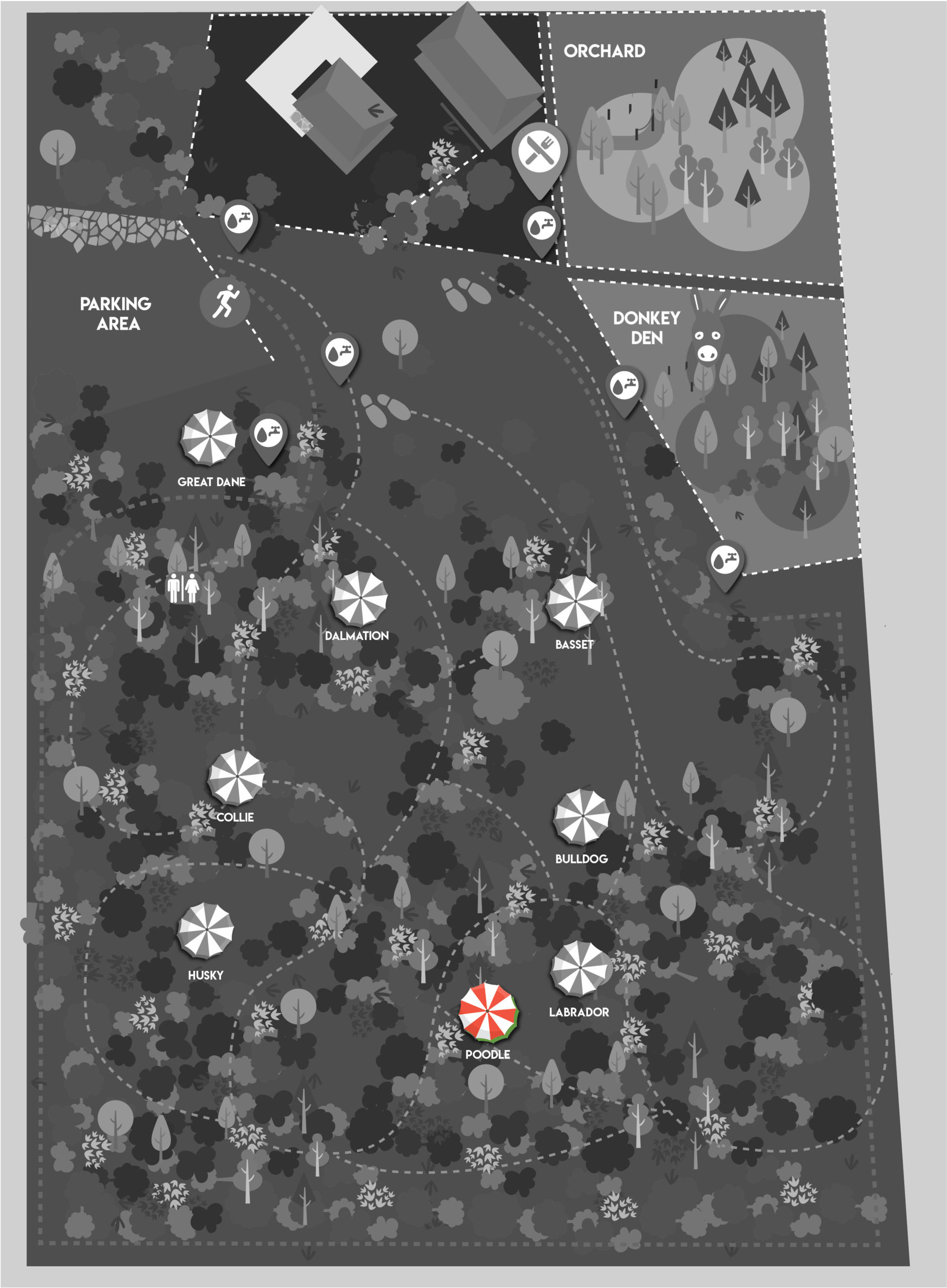 map poodle